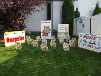 Lawn Card Rental Displays